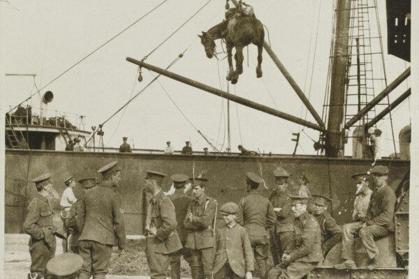 Horsing the Army in Twentieth-century Warfare